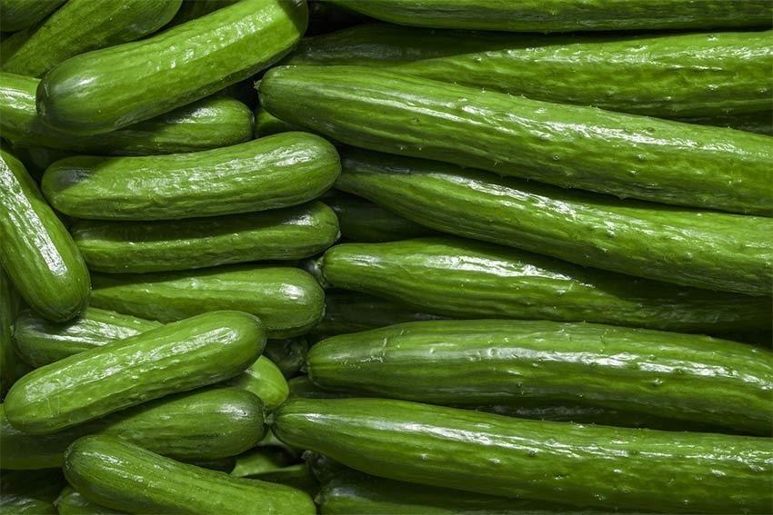 Over cucumbered