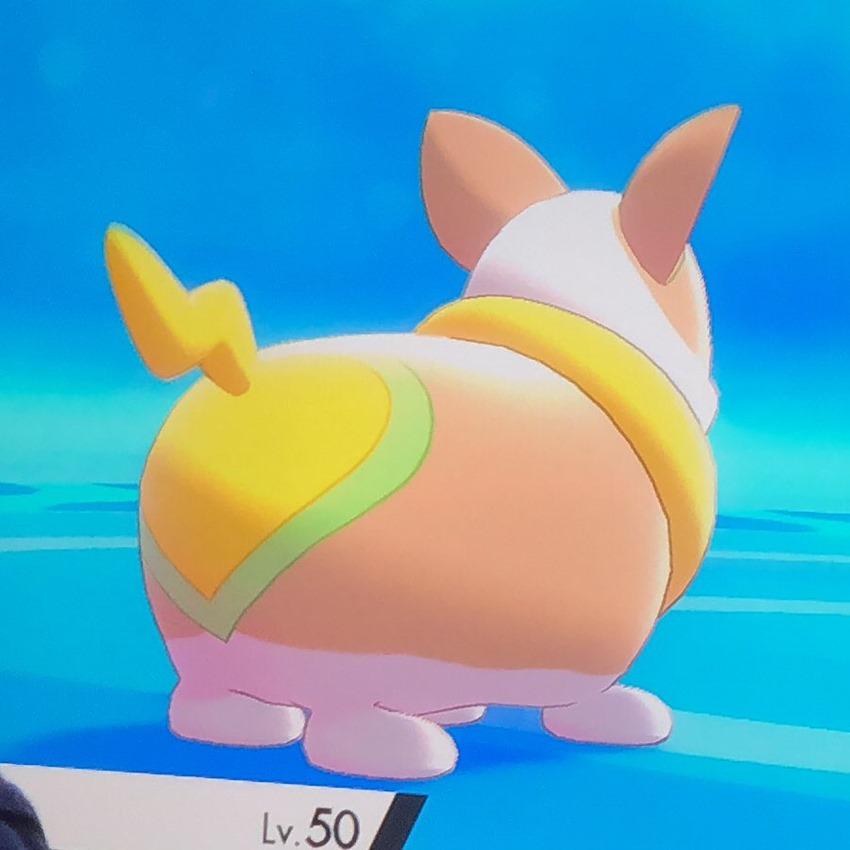 Pokémon Sword and Shield has a magnificent Corgi Pokémon