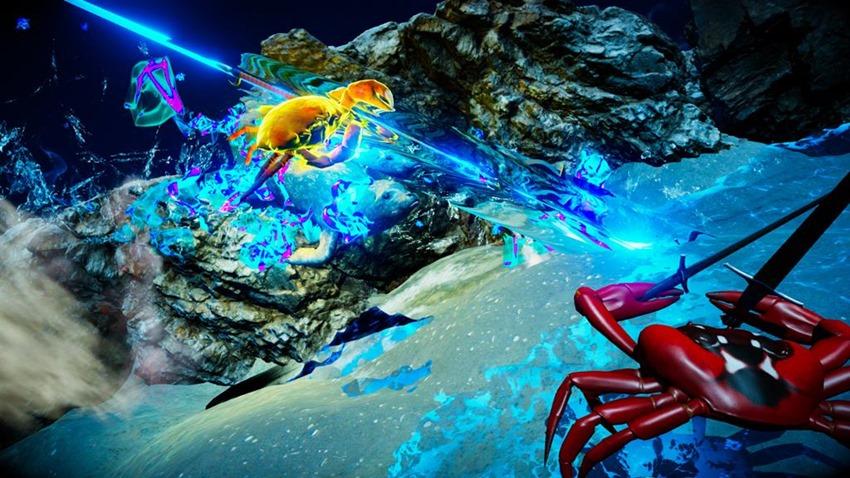 Fight Crab (1)