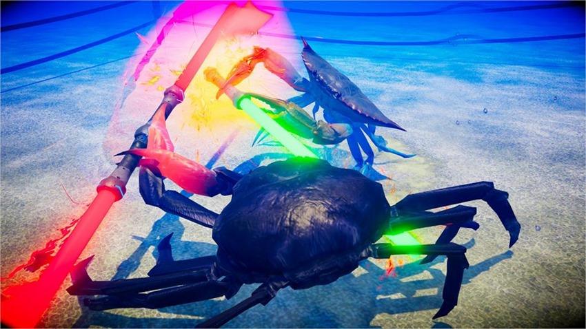 Fight Crab (2)