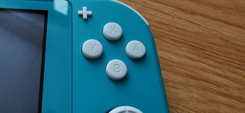 Switch Lite (4)