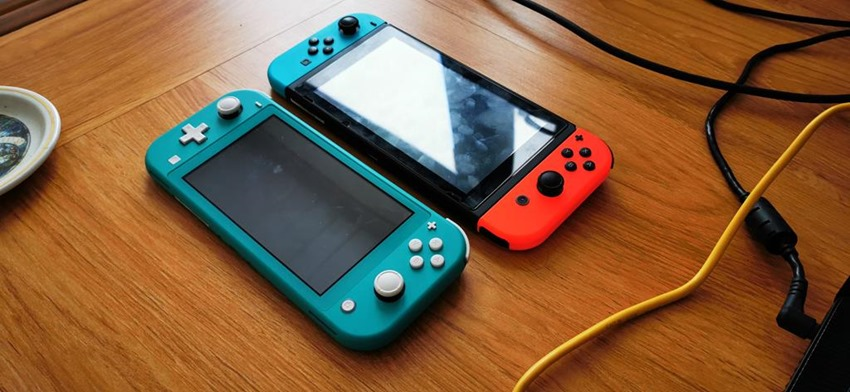 Switch Lite (8)