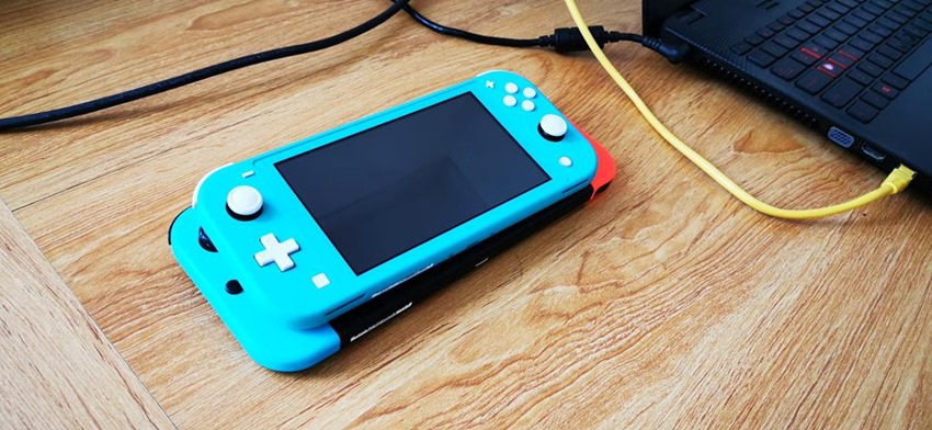 Switch Lite (9)