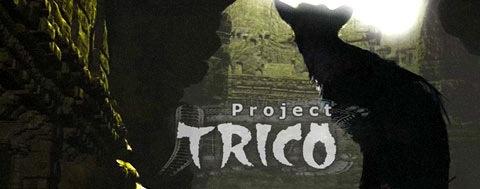projecttrico.jpg