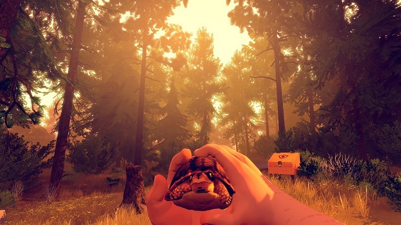 Firewatch Review 5