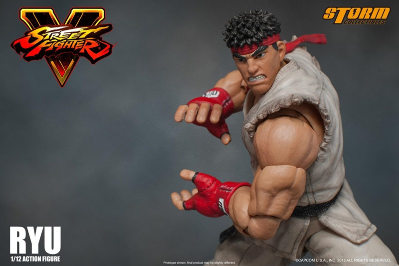 Ryu Storm Collectibles (17)