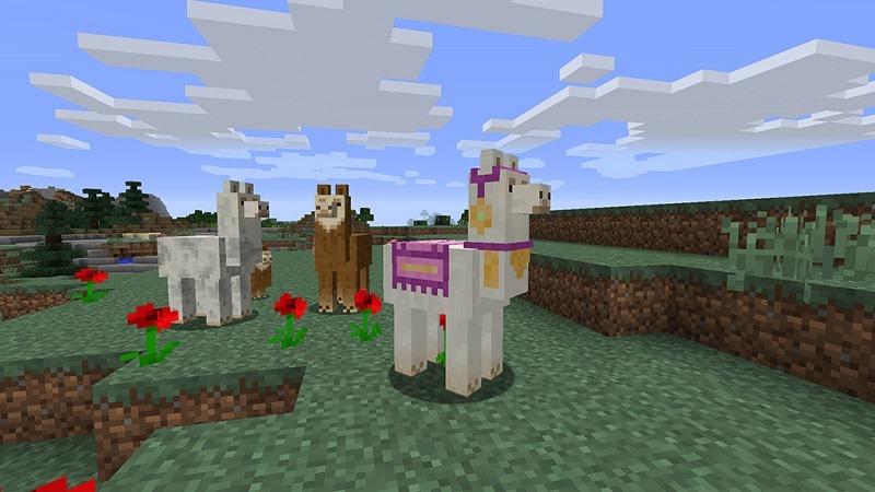 llamas Minecraft
