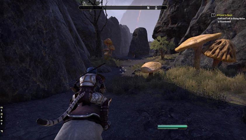 Elder Scrolls Morrowind (11)