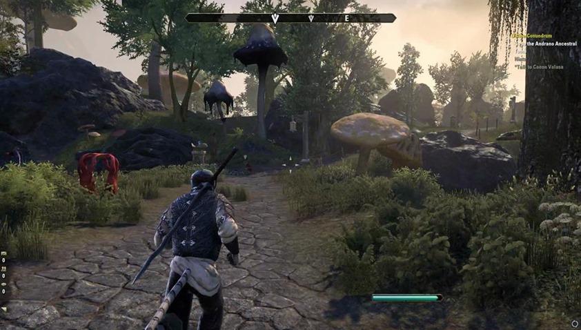Elder Scrolls Morrowind (4)