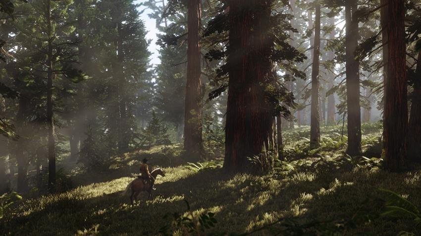 Red Dead Redemption 2 delayed 6