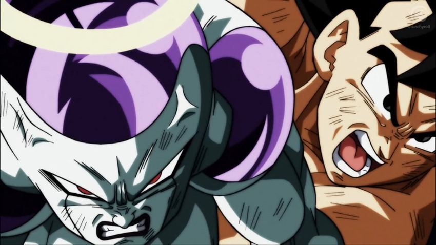 Dragon Ball Super (4)