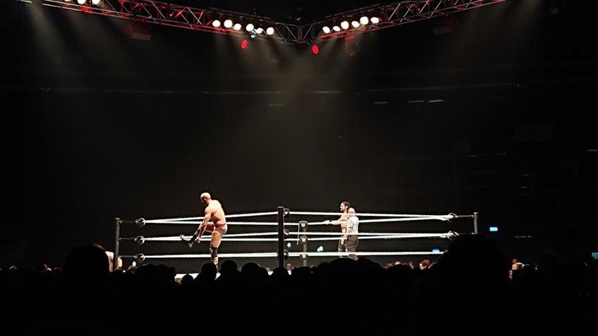 WWE Live (21)