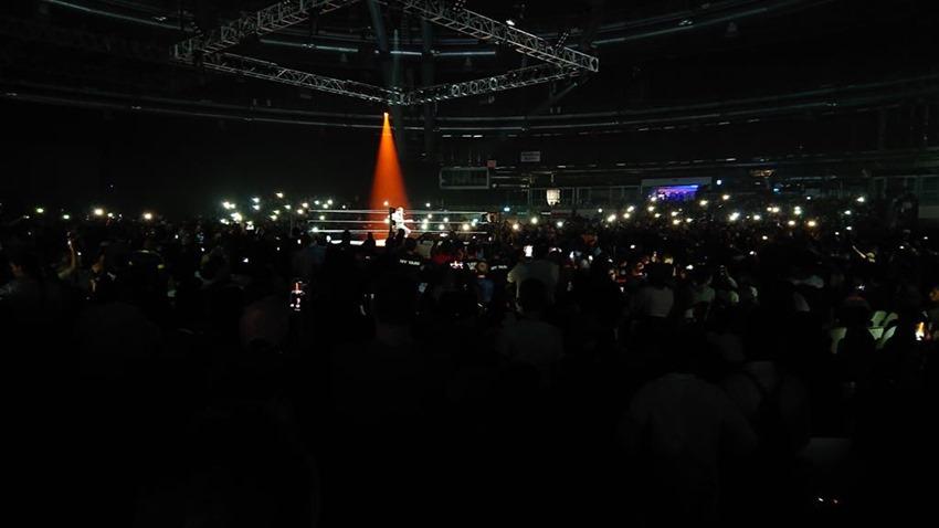 WWE Live (38)