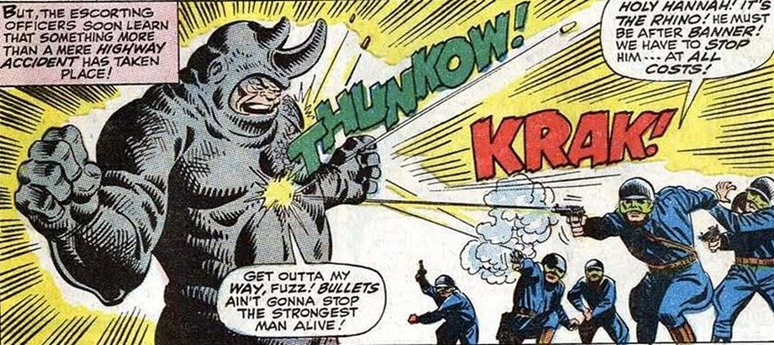 Rhino (13)