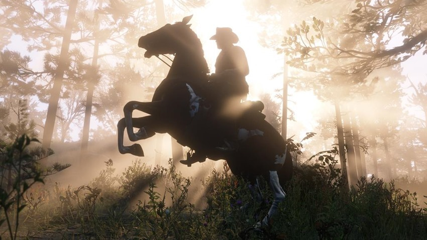 Red Dead Redemption 2 (45)
