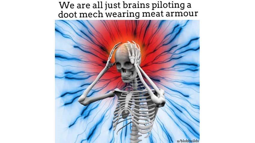 Memes (2)