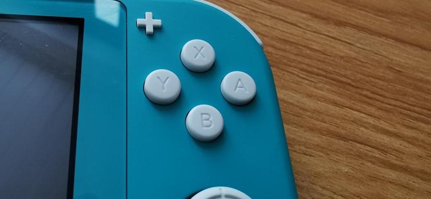 Switch Lite (4)